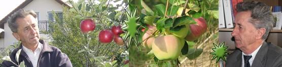 Ivan Hričovský: Sezóna sa pre ovocinára nikdy nekončí
