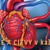 Čajové zmesi proti ateroskleróze