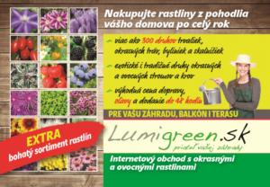 LumiGreen