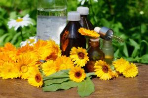 ľubovník byliny elixír tinktúra tincture herbal medicine
