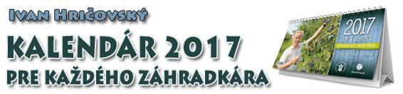 Banner_Kalendar-2017_1
